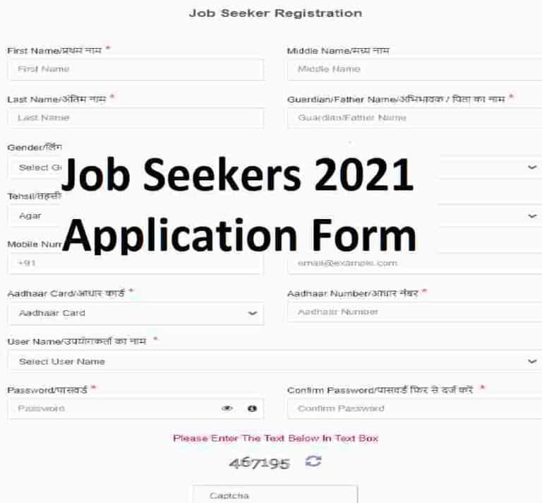 MP Rojgar Portal रोजगार पोर्टल वेबसाइट पर आप जॉब की तलाश कर रहे हैं